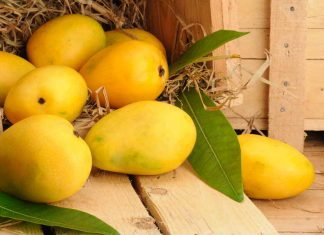 Can diabetics eat mangoes