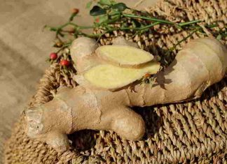 diabetes-food-ginger-adrak-health-benefits