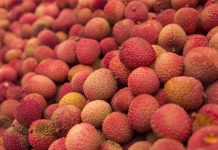 diabetes-diet-litchi-health-benefits
